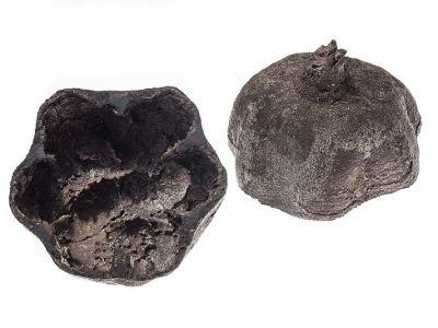 armenien-object-in-bronze-cut-pomegranate-krokodile-am-ararat-anna-eichlinger-800w